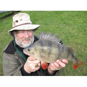 "8 HOUR SESSION ""DROP SHOTTING"" FOR  PERCH ON THE RIVER SEVERN"