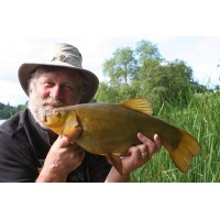 8 HOUR TENCH FISHING TRIP